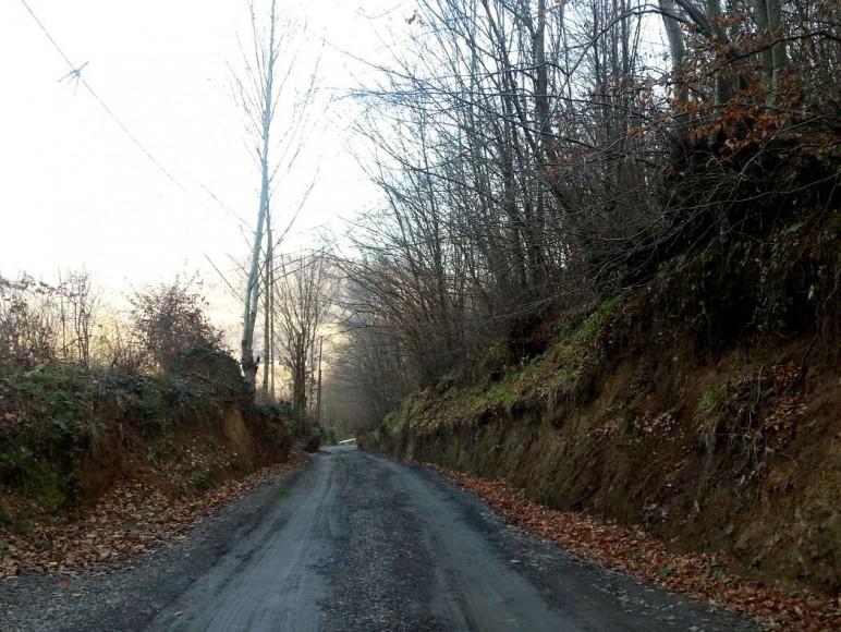 Kulindağ Dağ Evi Yolu